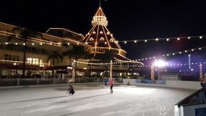 Ice skate 2