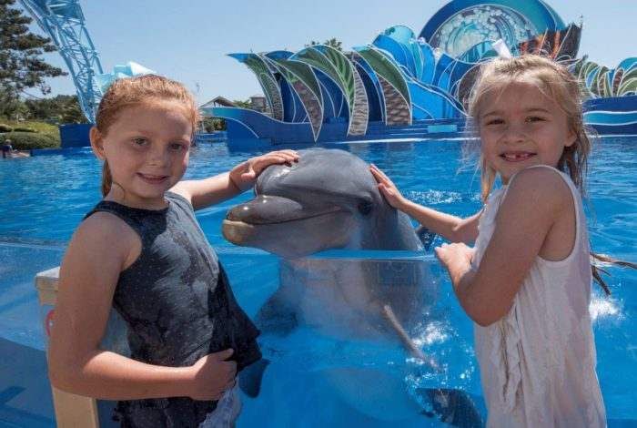 5 Stops to Make This Summer @SeaWorld San Diego!~ Sponsored Post